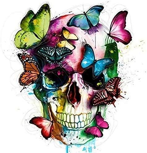 2 peintures tête de mort fleurs et papillons