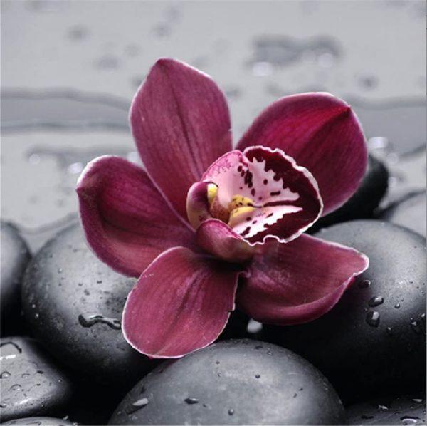 Kit collage diamant 5D - Orchidée
